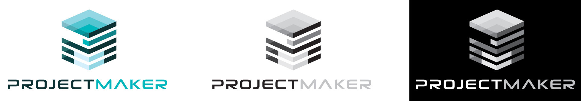 logoproject2